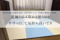 和紙製 置き畳 乳白色×青磁色
